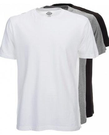 Dickies multi-colour T-shirt pack (Assorted Colors) (3XL)